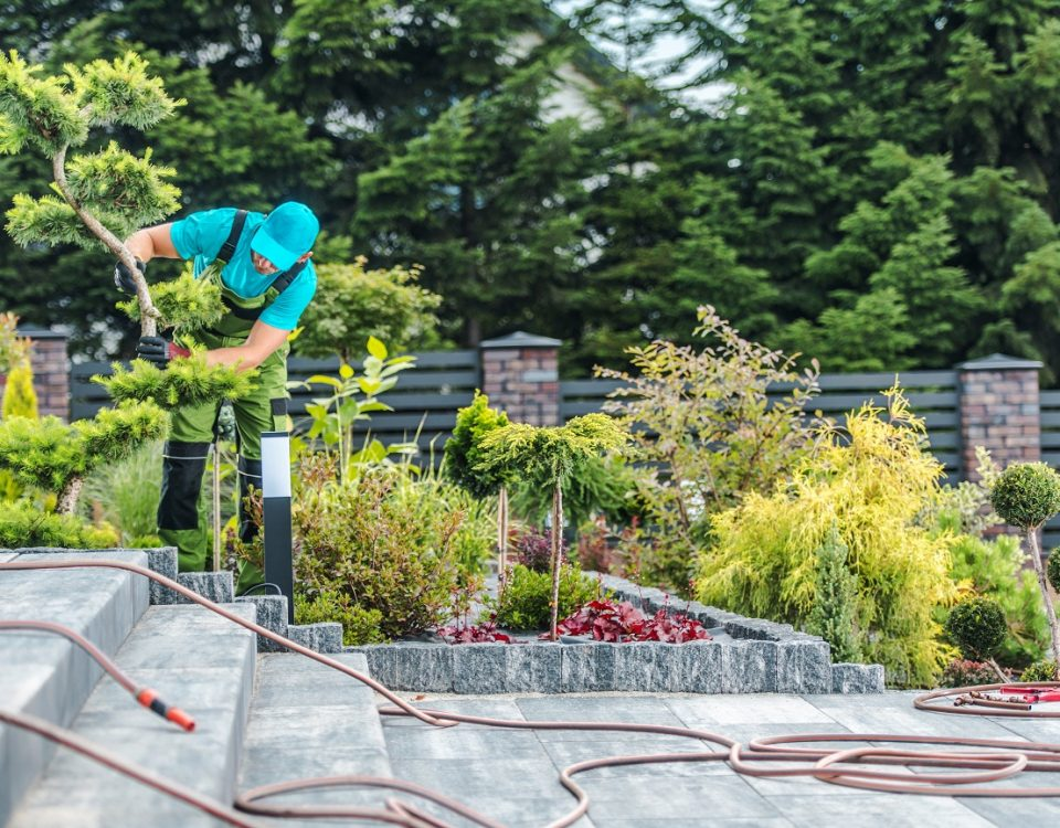 Débroussaillage Antibes jardinier-antibes.com